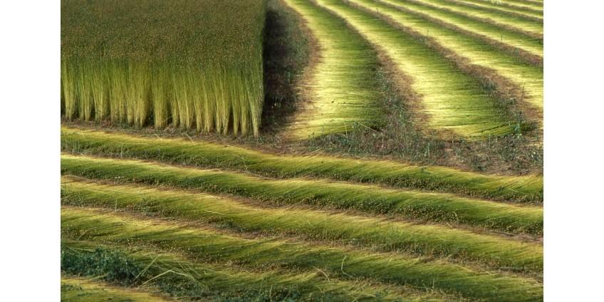 О свойствах льняной пряжи